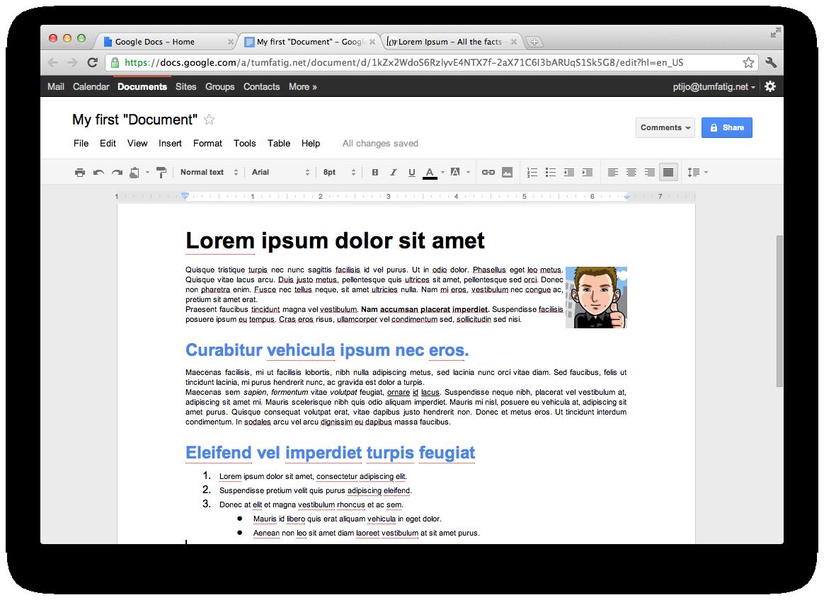 Google Docs Document