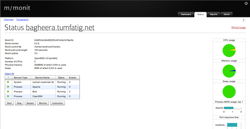 Status page from M/Monit