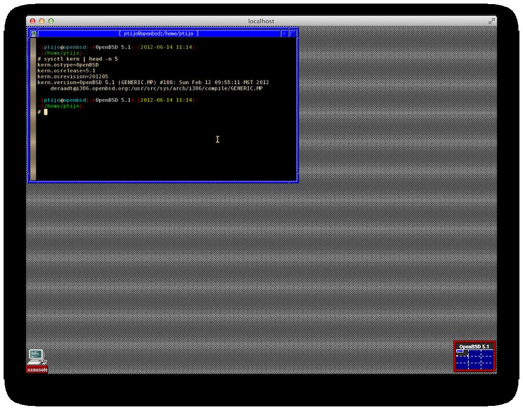 OpenBSD FVWM
